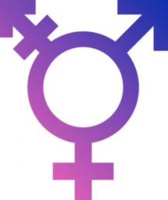 Trans crédible et féminine cherche novice